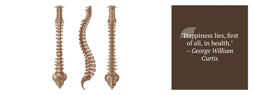 "spines | ""Happiness lies, first of all, in health."" – George William Curtis"